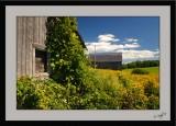 Countryside 07