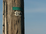 The First Telegraph Pole