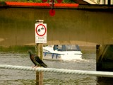 Useless signs have invaded our waterways.