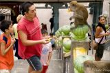 Oh Boy! This Monkey Is Really Famished
