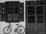 The Black Window