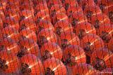 Bright Red Lanterns