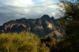 Morning Sun on the Santa Catalina Mountains