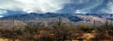 Saguaro National Park East  Panorama