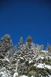 20061228 / snowday