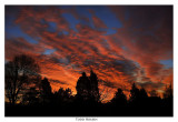 Sunrise022307.jpg