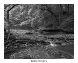 mccorrmicks.creek.jpg