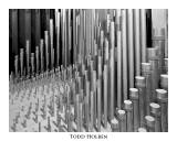 organ.pipes.inside.jpg