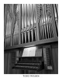 organ.pipes.jpg