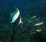 Galapagos 06 72.jpg