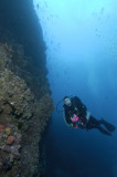 Galapagos 06 29.jpg