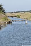 Passerelles dans le marais - Footbridges in the marsh