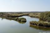 Marais - Marsh