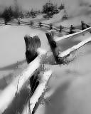 pond fence.jpg