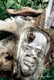zimbabwee