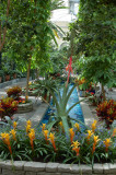 Botanical Garden Lobby