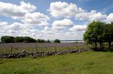Hornborgasjön Fågeludden 2007