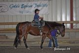 Cub Scouts Visit Gale's Equine Facility and Carousel 4H Club