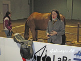 Kate does saddle fitting clinic