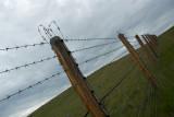 êîëþ÷êà íà ïëàòî Óêîê / long, long fence, not far from the frontier, made from barbed wire, with a several free open gates