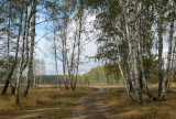classical central-Russian scenery