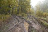 Meschera lowland, the impassable road