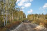 dam throw the Meschera forests and marshlands