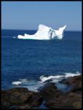 IcebergSouthVertical43230.jpg