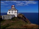 CapeSpearOldLightandCliff43345B.jpg