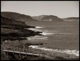 CoastlineatBlackheadBW43196.jpg