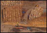 WoodTrucks5360.jpg