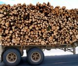 WoodOnTruck5105.jpg