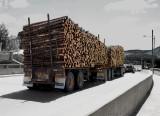 WoodTruck5103.jpg