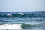 Stefano and Paul surfing