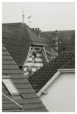 Neighbourhood Roofs
