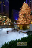 Christmas in New York at Night