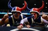 NFL Houston Texans fans
