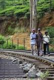 Railway in Nanu Oya