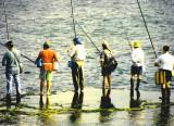 Fishermen -Jaffa Port