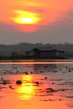 Lake Boeuf Camp @ Sunrise