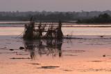Duck Blind @ Sunrise