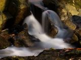 wCunningham Falls2.jpg