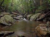 wHunting Creek1.jpg