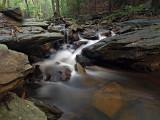 wHunting Creek5.jpg