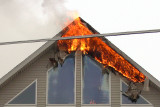 Francis Sites Feb. 12, 2007