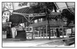 Speed Hound Entrance 1930's