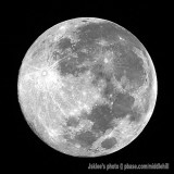 The 15th Moon - Full Moon
