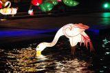 2006.10.07 - Mid-autumn Lantern Carnival in Sha Tin Central Park