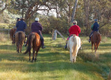 Some of the riders heading out on their trail ride.