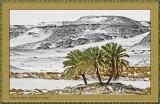Salima Oasis Palm against BW GrainTexture
